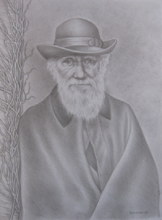 Pencil Sketch of Charles Darwin by Michelle Bakay.  Inspired by an 1881 photograph of Darwin standing on the veranda at Down House by Elliot and Fry of London.  Darwin was seventy-two at the time.