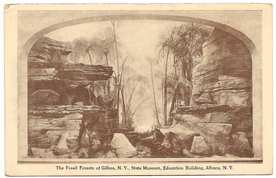 Vintage Post Card Showing a Reconstruction of the Devonian Aged Gilboa Forests